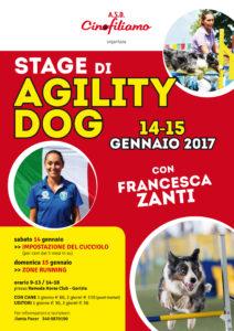 Francesca Zanti agility.indd
