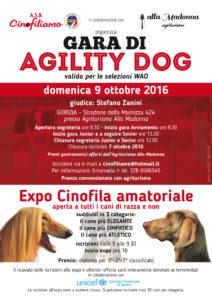 locandina Agility-Expo 9 ottobre 2016.indd